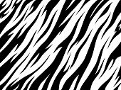 Tiger Texture Abstract Background. Animal Safari Abstract Skin White And Black . Vector Jungle Strip poster