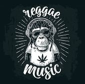 Monkey Hipster With Dreadlocks In Headphones, Sunglasses And T-shirt With Marijuana Leaf. Reggae Mus poster