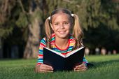 Theres Nothing Like Reading. Happy Reader. Cute Reader Read Book On Green Grass. Small Reader Enjoy  poster
