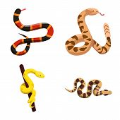 Isolated Object Of Snake And Creepy Icon. Set Of Snake And Danger Stock Vector Illustration. poster
