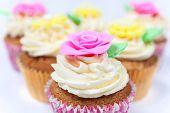 Cupcakes or cup cakes with icing or frosting, pink, yellow and cream with green leaves, rose and flo poster