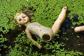 image of oddities  - The thrown out doll floats in a bog - JPG