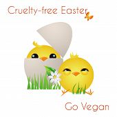 foto of animal cruelty  - Happy Cruelty - JPG