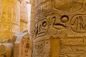 picture of hieroglyph  - Columns - JPG