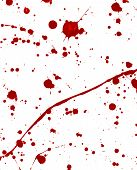 foto of war terror  - blood splattered on white surface like war or terrorism - JPG