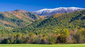 pic of cade  - Autumn color and snow - JPG