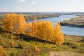 Oka River. Autumn View From The High Bank