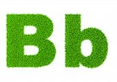 Grass letter B - ecology eco friendly concept character type