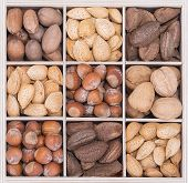 pic of brazil nut  - Mix nuts with almonds walnuts pecans hazelnuts and Brazil nuts in a wood soda crate - JPG
