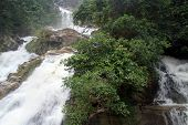 pic of ravana  - Ravana waterfall and bush near Ella Sri Lanka - JPG