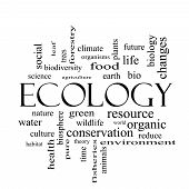 Ecology Word Cloud Concept In Black And White