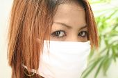 stock photo of avian flu  - Asian bird flu - JPG