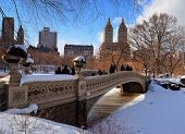 foto of skyscrapers  - New York City Manhattan Central Park panorama in winter with ice and snow over lake with bridge - JPG