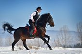 pic of horse riding  - young man riding horse outdoor in winter - JPG