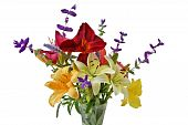 foto of clary  - Colorful lily flowers in the vase isolated over white - JPG