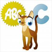 stock photo of animal eyes  - Vector animal abc - JPG