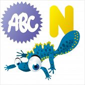 picture of newt  - N is for Newt - JPG