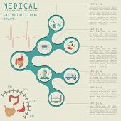 stock photo of gastrointestinal  - Medical and healthcare infographic - JPG