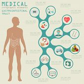 picture of gastrointestinal  - Medical and healthcare infographic - JPG