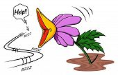 image of carnivorous plants  - Illustration of cartoon carnivorous plant while it is about to capture a fly - JPG