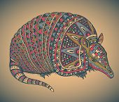 pic of armadillo  - Armadillo hand drawn vector illustration with a lot of details and colors - JPG