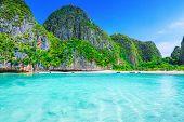 stock photo of phi phi  - View of Maya Bay Phi Phi island Thailand  - JPG
