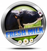image of cow head  - Metallic round icon or symbol with head of cow text fresh milk and three daisy flowers - JPG