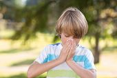 picture of blowing nose  - Little boy blowing his nose on a sunny day - JPG