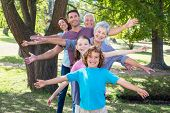 image of extended family  - Extended family smiling in the park on a sunny day - JPG