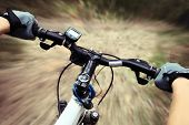 stock photo of bike path  - Riding on a bike on forest - JPG