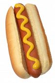 pic of hot dog  - Hot Dog with Mustard - JPG