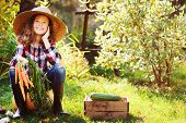 Happy Farmer Child Girl Sitting With Autumn Harvest In The Garden. Growing Fresh Organic Vegetables, poster