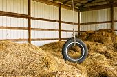 pic of rafters  - Old tire swing hanging from the rafters of a hay barn - JPG