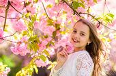 Girl On Smiling Face Standing Near Sakura Flowers, Defocused. Cute Child Enjoy Aroma Of Sakura On Sp poster