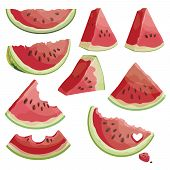 A Set Of Pieces Of Watermelon. A Collection Of Sliced Watermelon. Juicy Summer Fruit. poster