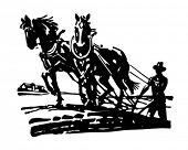 foto of horse plowing  - Horses Plowing Field  - JPG