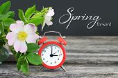 Spring Forward. Summer Time Change. Daylight Saving Time poster