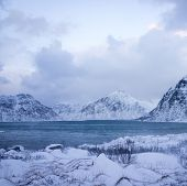 Beautiful untouched nature in northern Scandinavia poster
