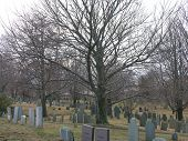 stock photo of 1700s  - gravestones in the burial hill cemetery on a cloudy day - JPG
