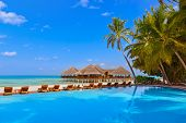 Pool and cafe on Maldives beach - nature vacation background poster