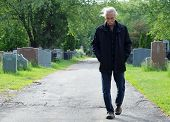 stock photo of walking dead  - Middle aged man walking in cemetery with head down - JPG