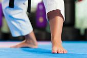 image of taekwondo  - Woman in martial art training in a gym - JPG