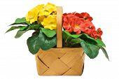 stock photo of easter flowers  - red and yellow flowers nested in a wooden basket - JPG