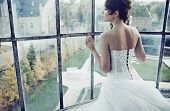 picture of bridal veil  - Young beautiful bride - JPG