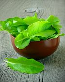 stock photo of sorrel  - Sorrel in brown ceramic bowl on a wooden table - JPG