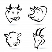 image of pig head  - happy farm animals isolated icons set - JPG