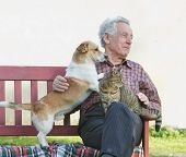 stock photo of cuddle  - Senior man with dog and cat on his lap on bench - JPG