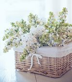 picture of gift basket  - Fresh spring bouquet of white lilac flowers in a wicker basket shabby chic home decor in a rustic style vintage faded colors - JPG