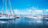 picture of sails  - Sailboat harbor - JPG