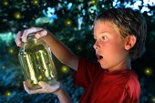 image of fireflies  - Boy with a jar of fireflies - JPG